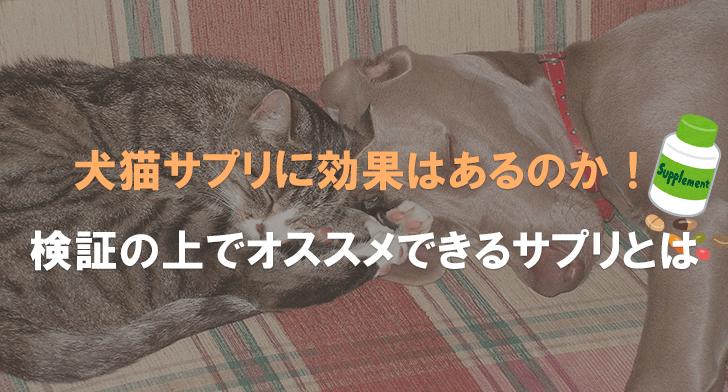 犬猫サプリに効果はあるのか!検証の上でオススメできるサプリとは