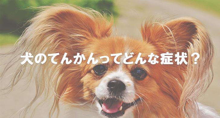 犬のてんかんってどんな症状?