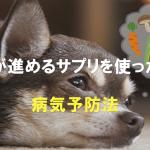 獣医が進めるサプリを使った犬の病気予防法