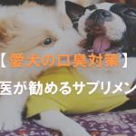 獣医が勧める愛犬の口臭対策サプリメント
