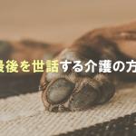 愛犬の最後を世話する介護の方法とは?