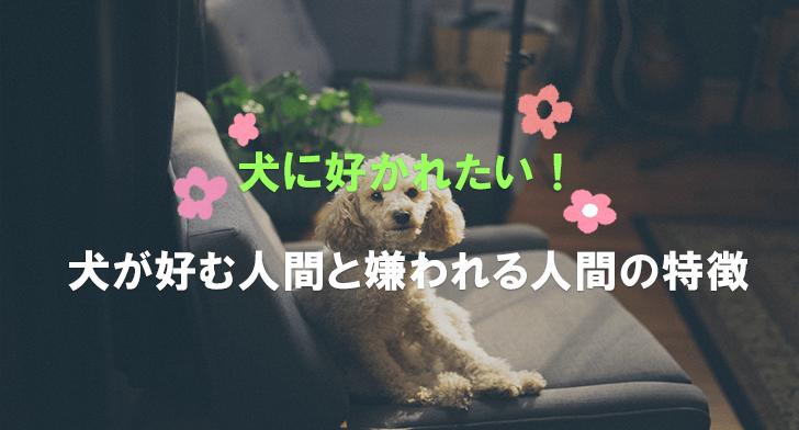 犬に好かれたい!犬が好む人間と嫌われる人間の特徴