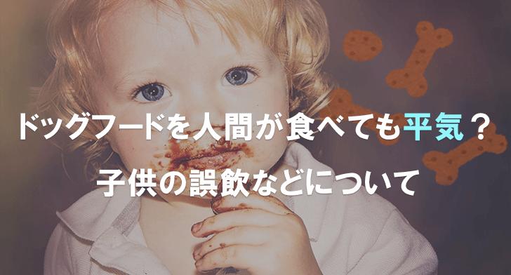 ドッグフードを人間が食べても平気?子供の誤飲などについて