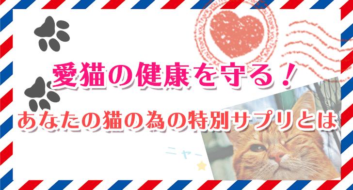 愛猫の健康を守る!あなたの猫の為の特別サプリとは