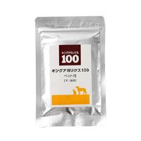 キングアガリクス100 猫 病気2