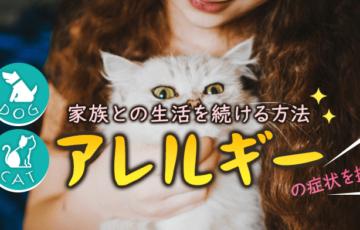 犬・猫アレルギーの画像